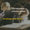 Ashinaga Africa Initiative – Full Undergraduate Scholarships