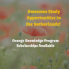 Orange Knowledge Programme (Former Netherlands Fellowship Program) Scholarships