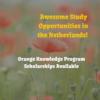 Orange Knowledge Programme (Former Netherlands Fellowship Program) Scholarships