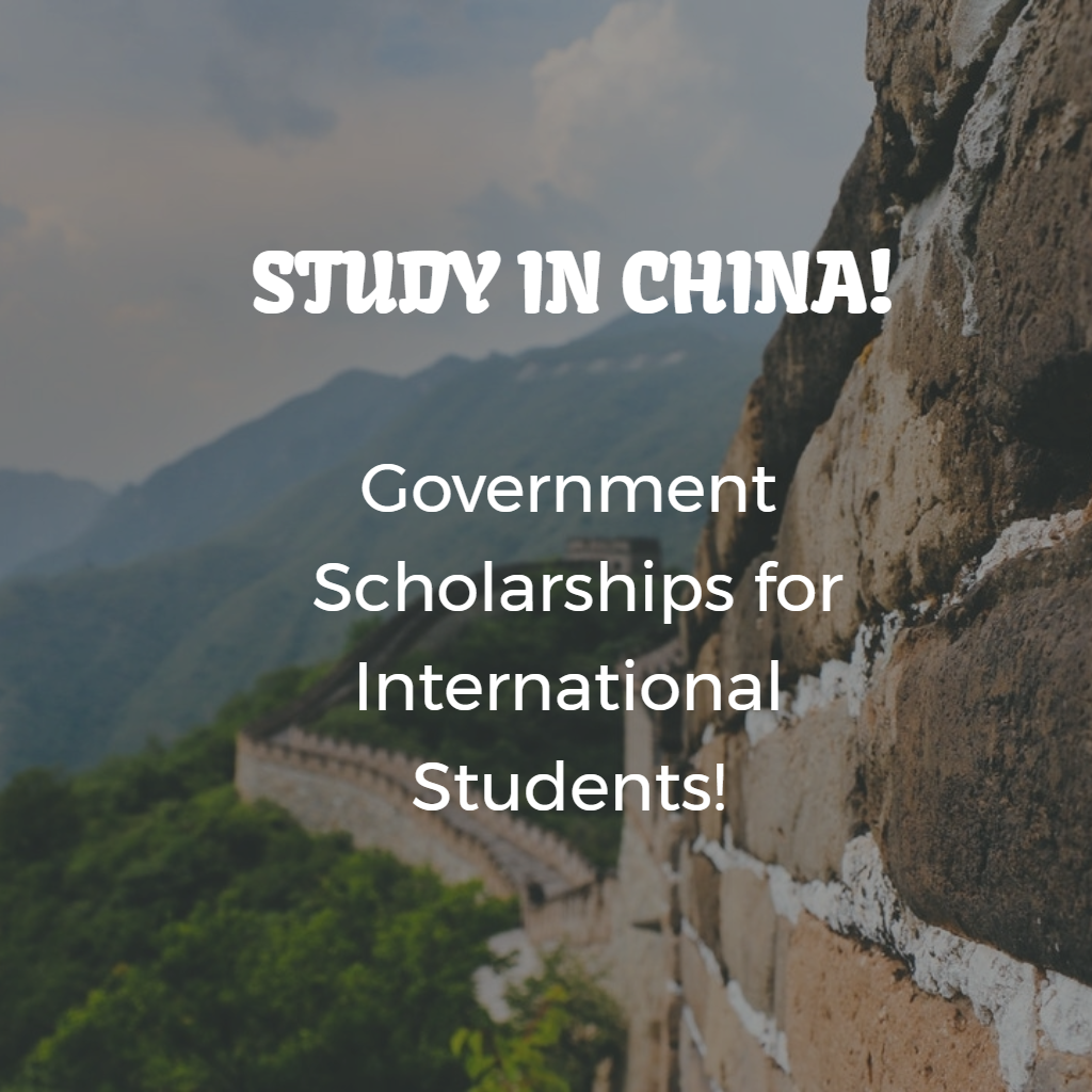 china Chinese Scholarship Application Form For Internanational Student on
